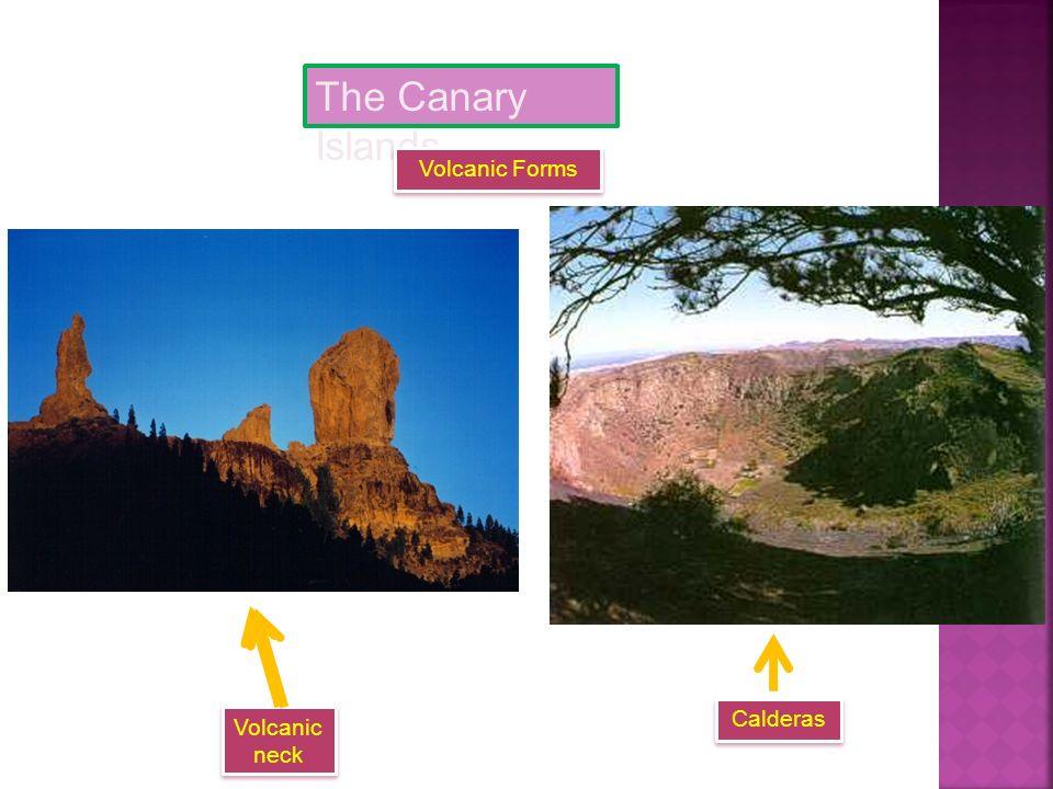 The Canary Islands Volcanoes El Teide
