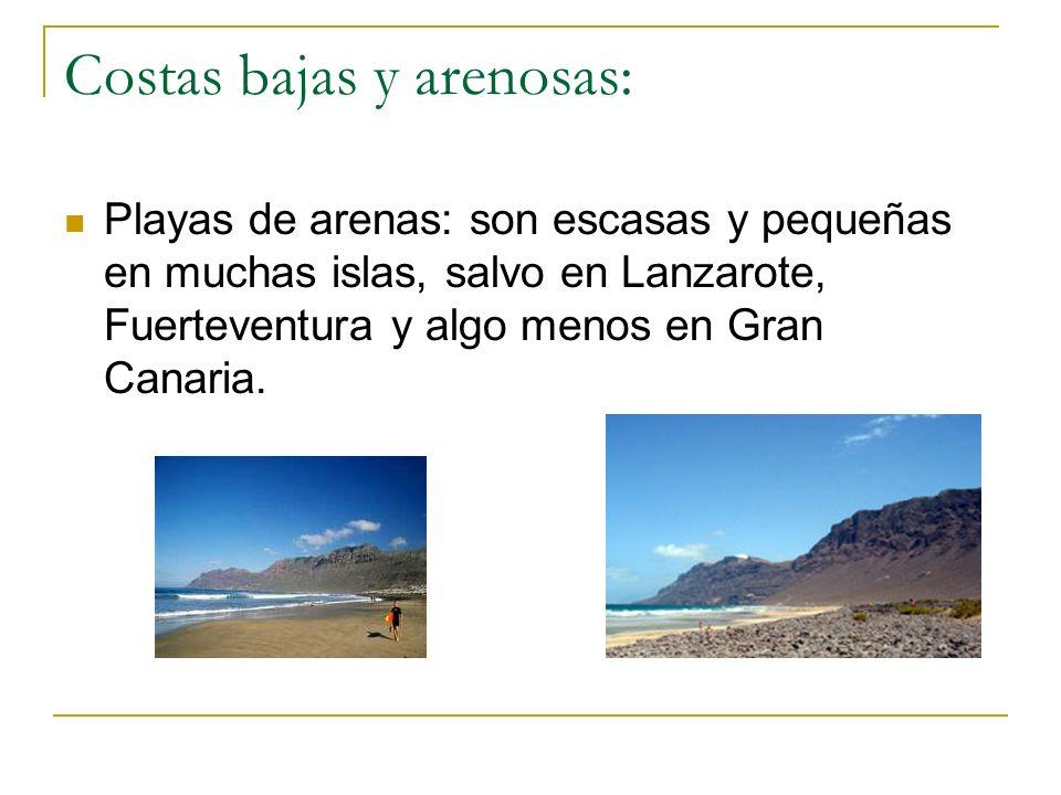 Costas bajas y arenosas: Playas de arenas: son escasas y pequeñas en muchas islas, salvo en Lanzarote, Fuerteventura y algo menos en Gran Canaria.