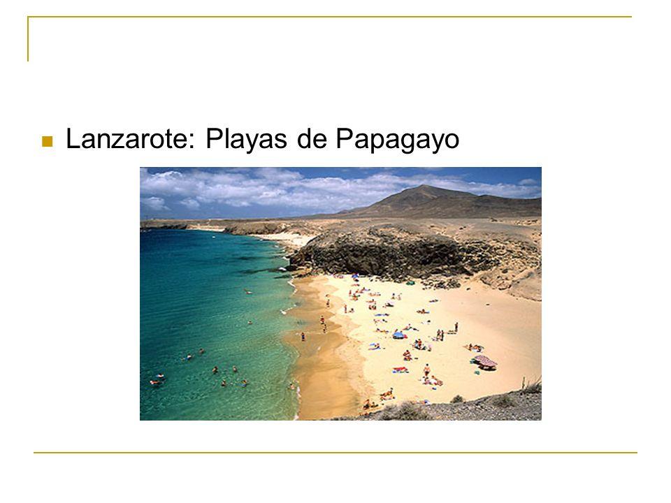 Lanzarote: Playas de Papagayo