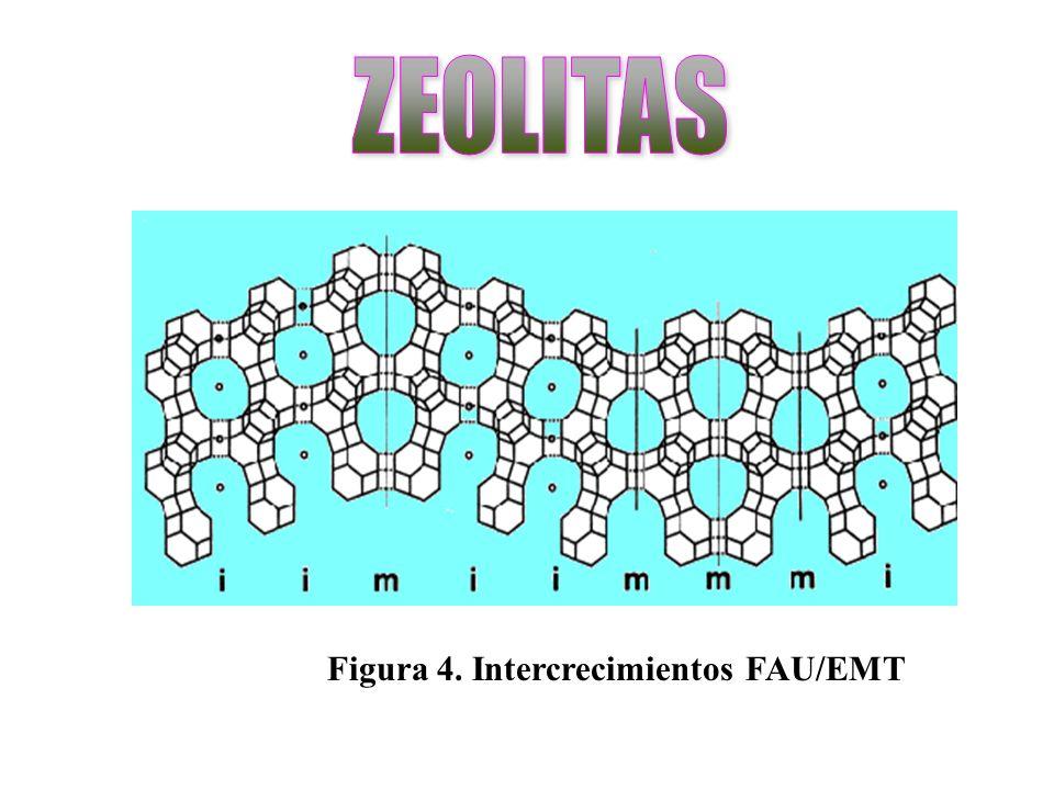 Figura 4. Intercrecimientos FAU/EMT