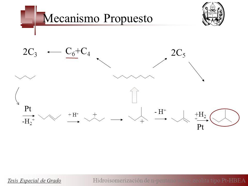 Pt +H 2 + Pt -H 2 + + H + + + - H + 2C 5 C 6 +C 4 2C 3 Tesis Especial de Grado Hidroisomerización de n-pentano sobre zeolita tipo Pt-HBEA Mecanismo Pr