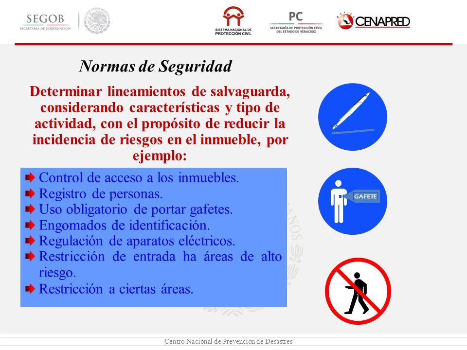 Centro Nacional de Prevención de Desastres Normas de Seguridad Determinar lineamientos de salvaguarda, considerando características y tipo de activida