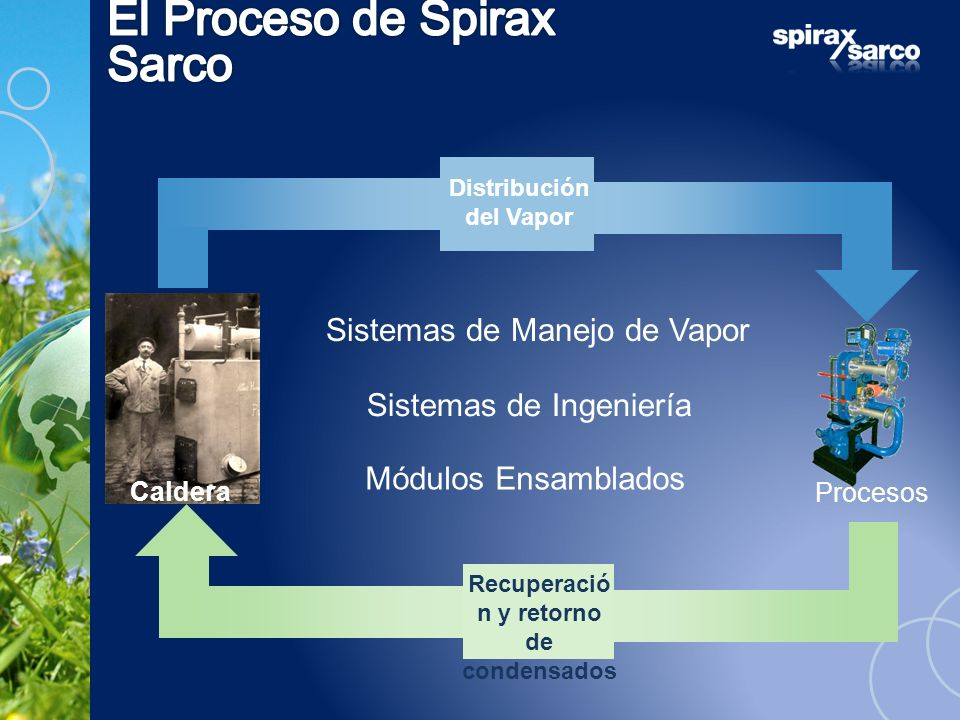 Distribución del Vapor Recuperació n y retorno de condensados Sistemas de Manejo de Vapor Sistemas de Ingeniería Módulos Ensamblados Procesos Caldera