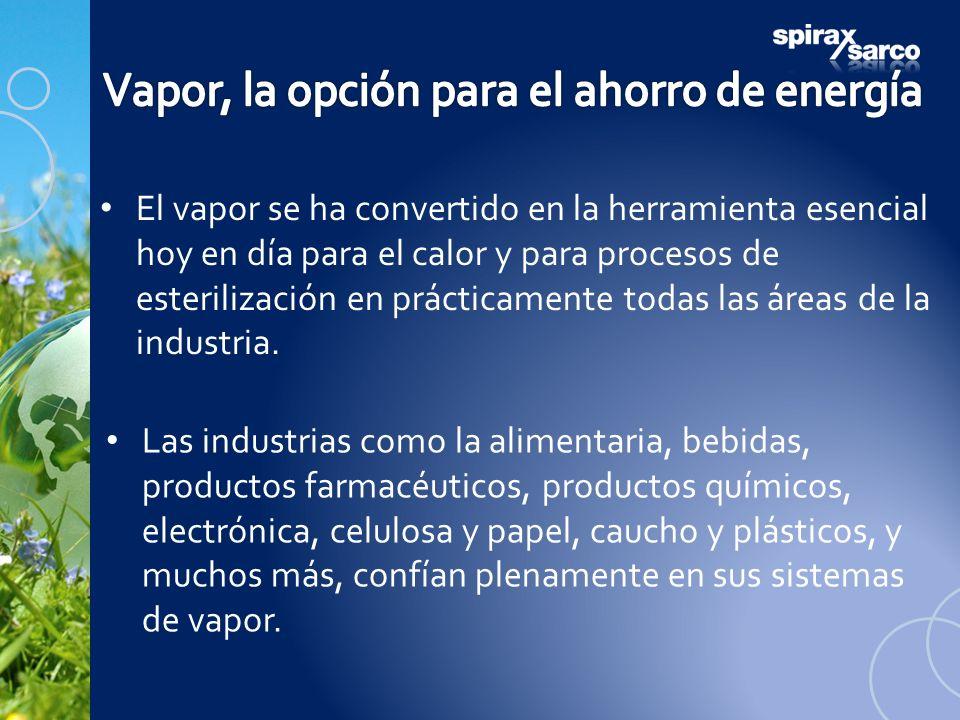 El vapor se ha convertido en la herramienta esencial hoy en día para el calor y para procesos de esterilización en prácticamente todas las áreas de la