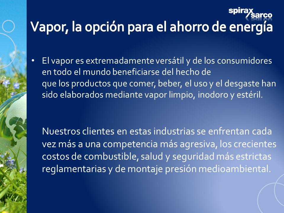 El vapor es extremadamente versátil y de los consumidores en todo el mundo beneficiarse del hecho de que los productos que comer, beber, el uso y el d