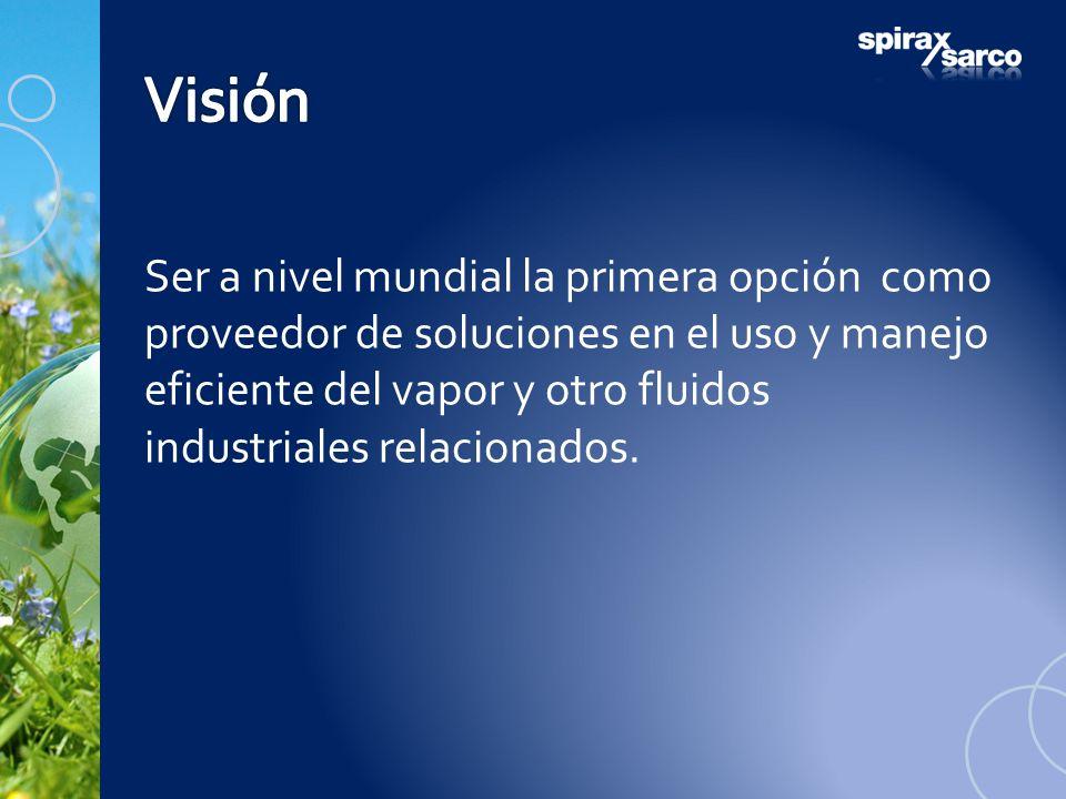 Ser a nivel mundial la primera opción como proveedor de soluciones en el uso y manejo eficiente del vapor y otro fluidos industriales relacionados.