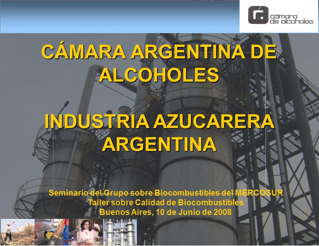 Seminario del Grupo sobre Biocombustibles del MERCOSUR Taller sobre Calidad de Biocombustibles Buenos Aires, 10 de Junio de 2008 CÁMARA ARGENTINA DE A
