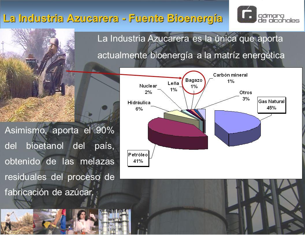 La Industria Azucarera - Fuente Bioenergía La Industria Azucarera es la única que aporta actualmente bioenergía a la matríz energética Asimismo, aport