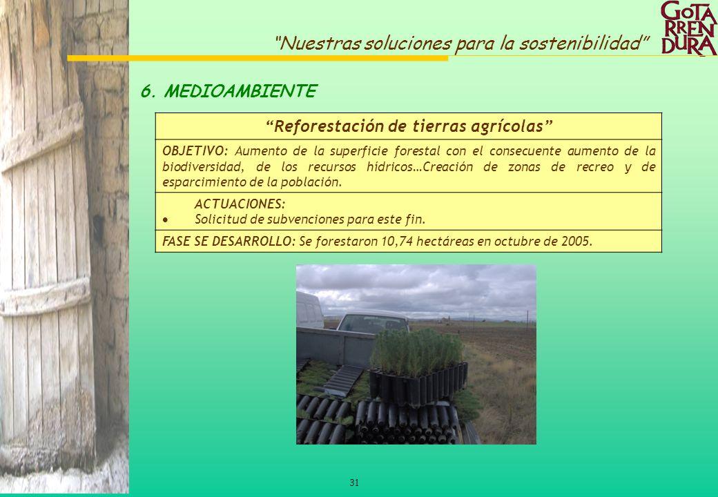 31 Nuestras soluciones para la sostenibilidad 6. MEDIOAMBIENTE Reforestación de tierras agrícolas OBJETIVO: Aumento de la superficie forestal con el c
