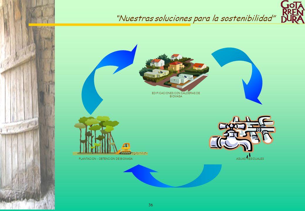 36 Nuestras soluciones para la sostenibilidad EDIFICACIONES CON CALDERAS DE BIOMASA AGUAS RESIDUALESPLANTACION - OBTENCION DE BIOMASA