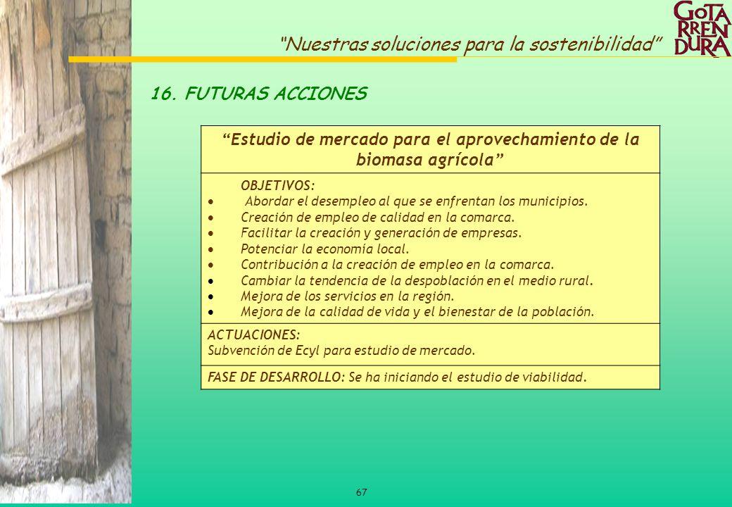 67 Nuestras soluciones para la sostenibilidad Estudio de mercado para el aprovechamiento de la biomasa agrícola OBJETIVOS: Abordar el desempleo al que