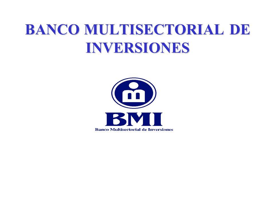 BANCO MULTISECTORIAL DE INVERSIONES Tipos de Microempresa