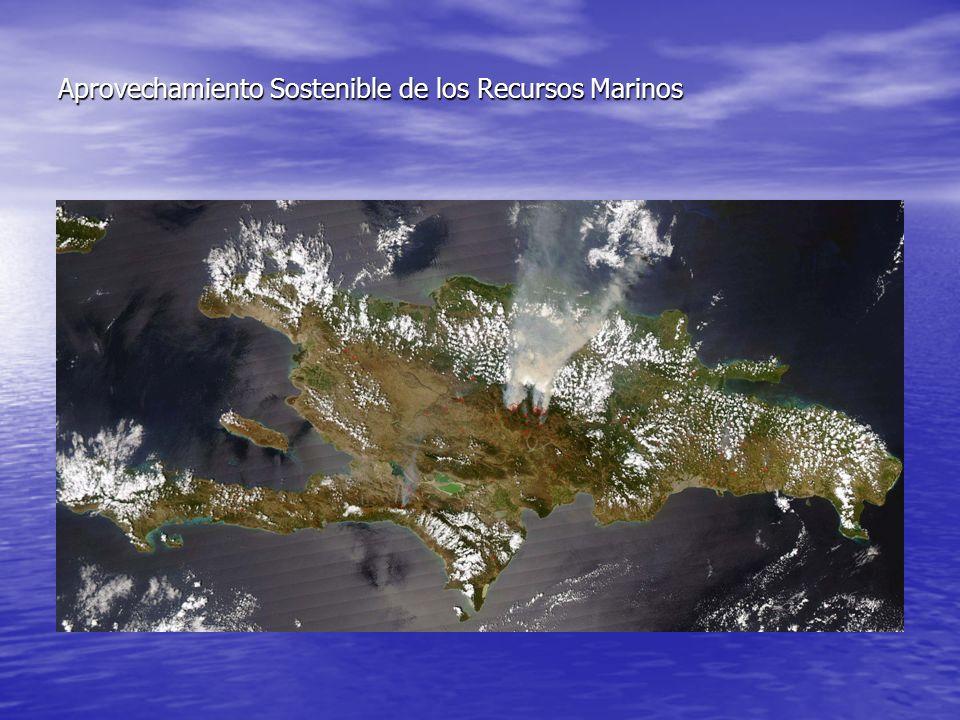 Aprovechamiento Sostenible de los Recursos Marinos Situación Actual Adem á s incursionan como parte oficial en la administraci ó n de estos recursos costeros marinos, la Marina de Guerra, los Ayuntamientos y La Autoridad Portuaria Dominicana.