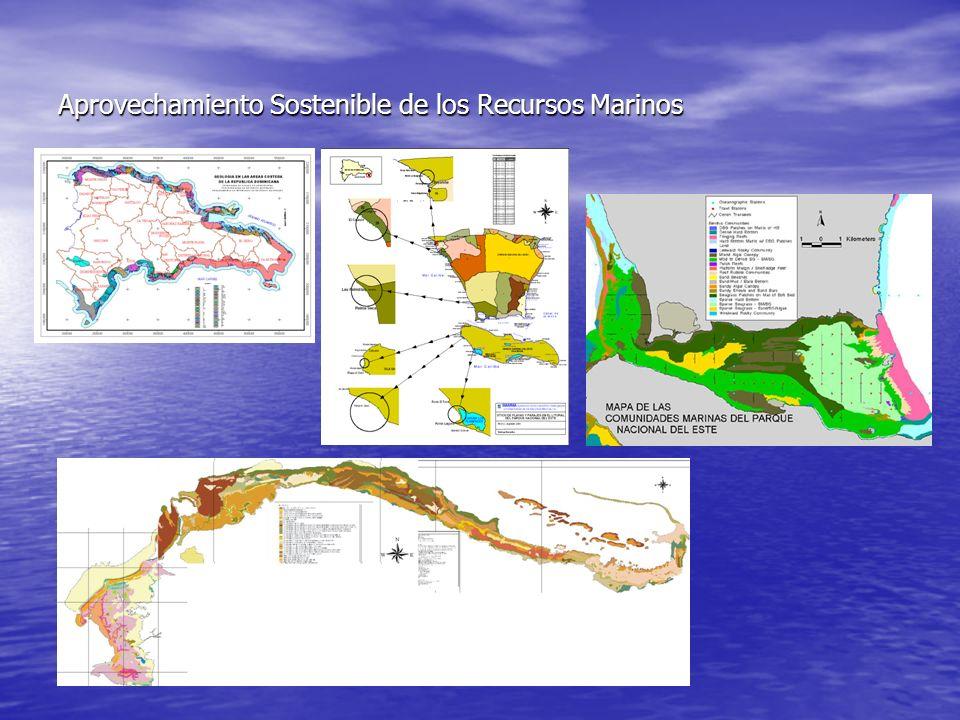 Desarrollo de la región costero marina As í mismo, esta situaci ó n de deterioro se refleja en los ecosistemas asociados a los arrecifes de coral, los manglares y las praderas de hierbas marinas o cebadales As í mismo, esta situaci ó n de deterioro se refleja en los ecosistemas asociados a los arrecifes de coral, los manglares y las praderas de hierbas marinas o cebadales Geraldes (2004), ha valuado el valor que las actividades económicas reciben como servicios ambientales desde los ecosistemas costeros marinos: manglares, playas arenosas, praderas marinas, arrecifes de coral hasta los 10 m de profundidad y otras áreas litorales, (valores PIB del año 2000 US$ 6,546,562).