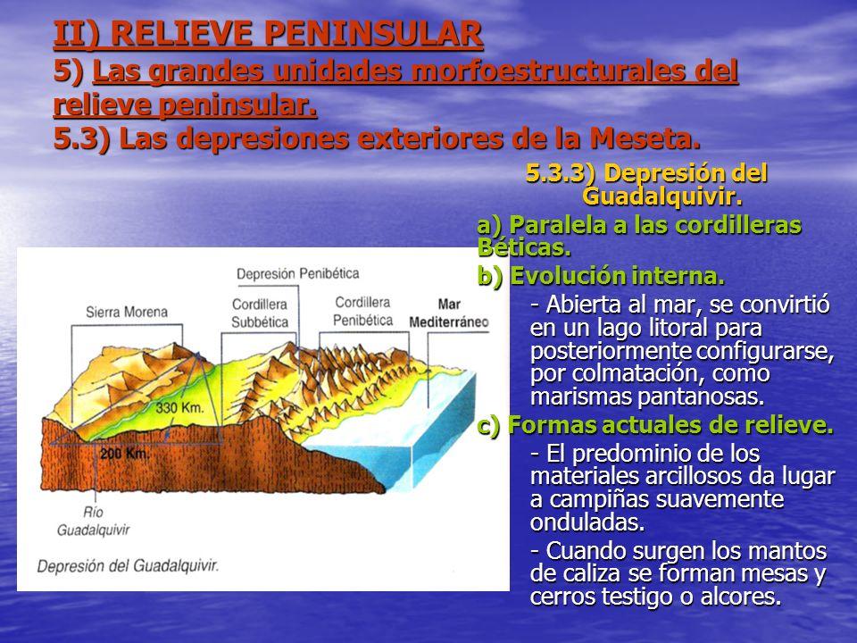II) RELIEVE PENINSULAR 5) Las grandes unidades morfoestructurales del relieve peninsular. 5.3) Las depresiones exteriores de la Meseta. 5.3.3) Depresi