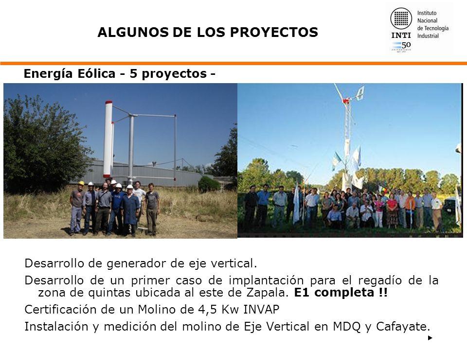 Desarrollo de generador de eje vertical. Desarrollo de un primer caso de implantación para el regadío de la zona de quintas ubicada al este de Zapala.