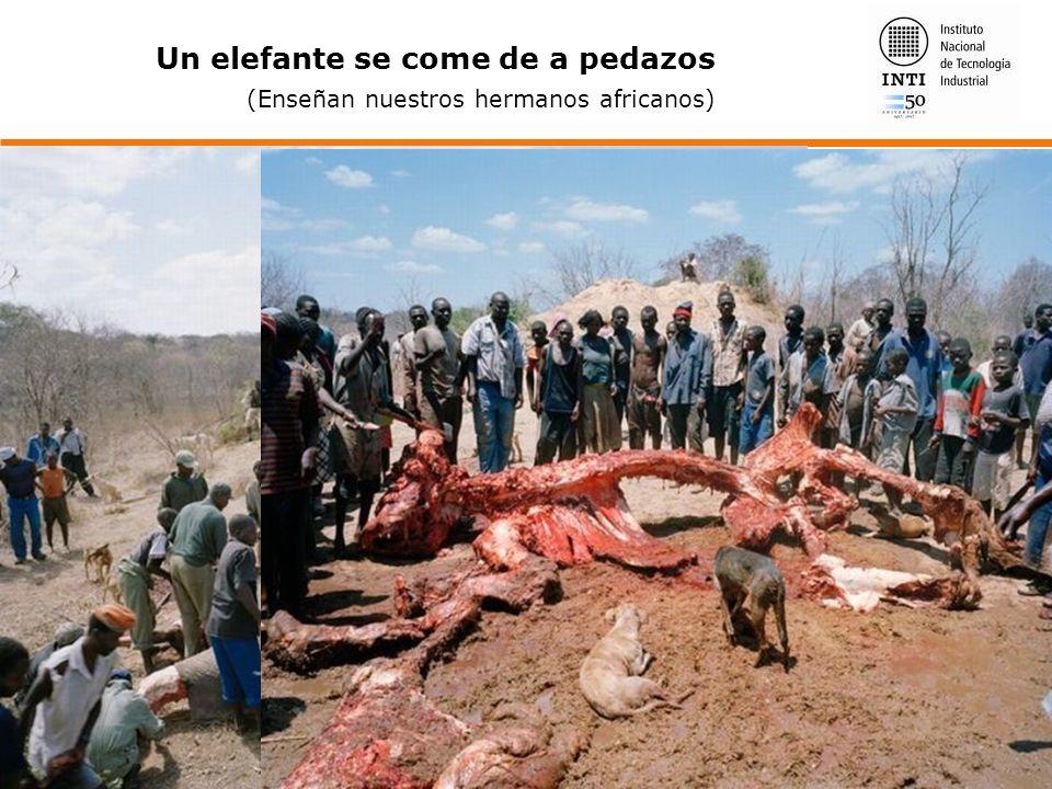 Un elefante se come de a pedazos (Enseñan nuestros hermanos africanos)
