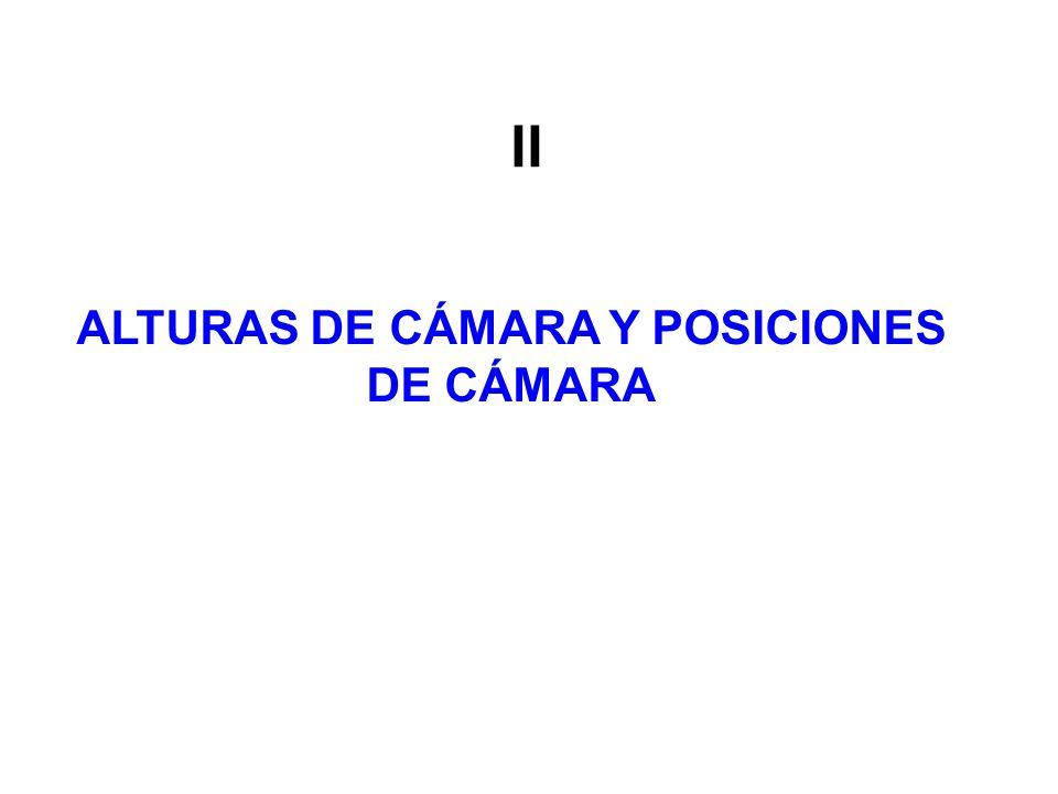 ALTURAS DE CÁMARA Y POSICIONES DE CÁMARA II