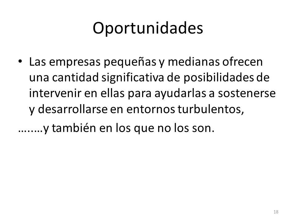 Oportunidades Las empresas pequeñas y medianas ofrecen una cantidad significativa de posibilidades de intervenir en ellas para ayudarlas a sostenerse