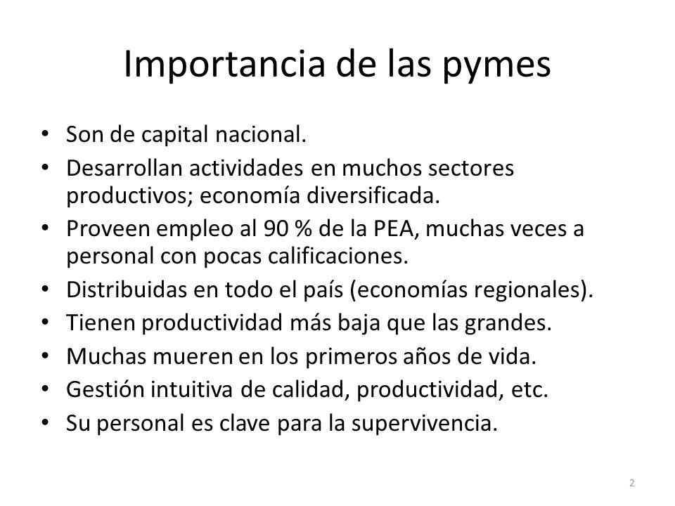 Importancia de las pymes Son de capital nacional. Desarrollan actividades en muchos sectores productivos; economía diversificada. Proveen empleo al 90