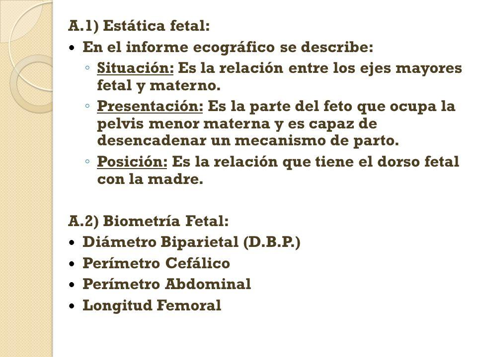 A.1) Estática fetal: En el informe ecográfico se describe: Situación: Es la relación entre los ejes mayores fetal y materno. Presentación: Es la parte