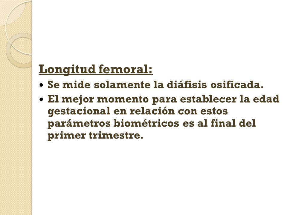 Longitud femoral: Se mide solamente la diáfisis osificada. El mejor momento para establecer la edad gestacional en relación con estos parámetros biomé