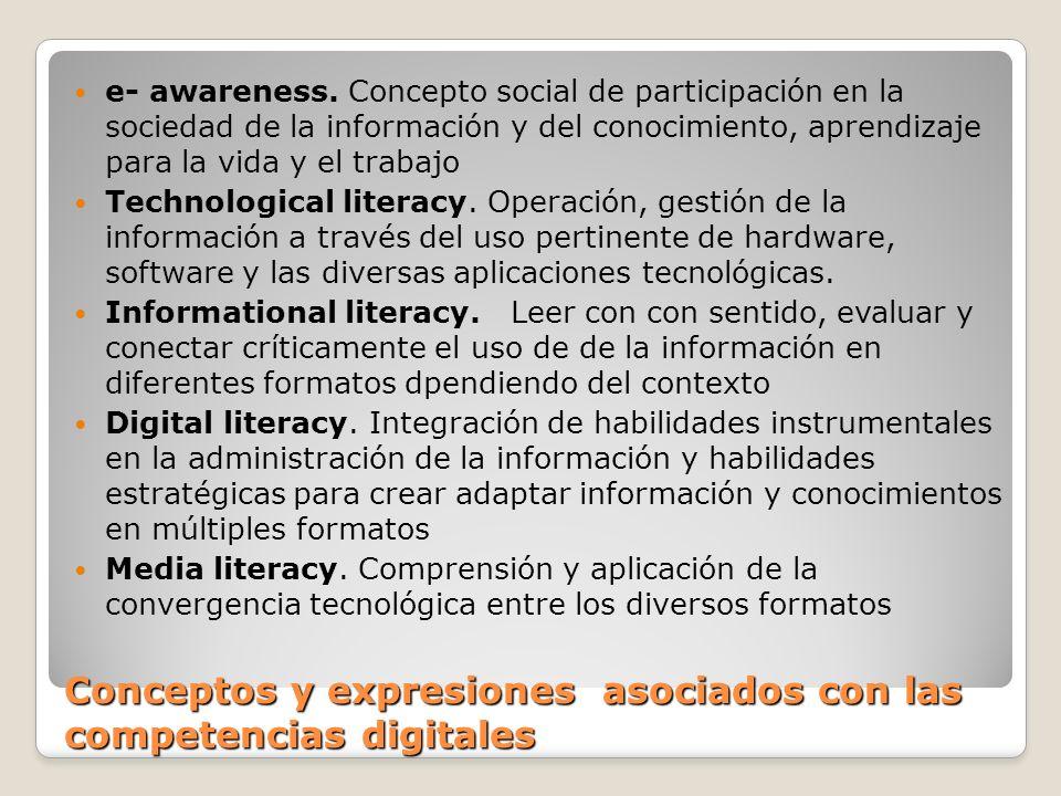 Conceptos y expresiones asociados con las competencias digitales e- awareness. Concepto social de participación en la sociedad de la información y del