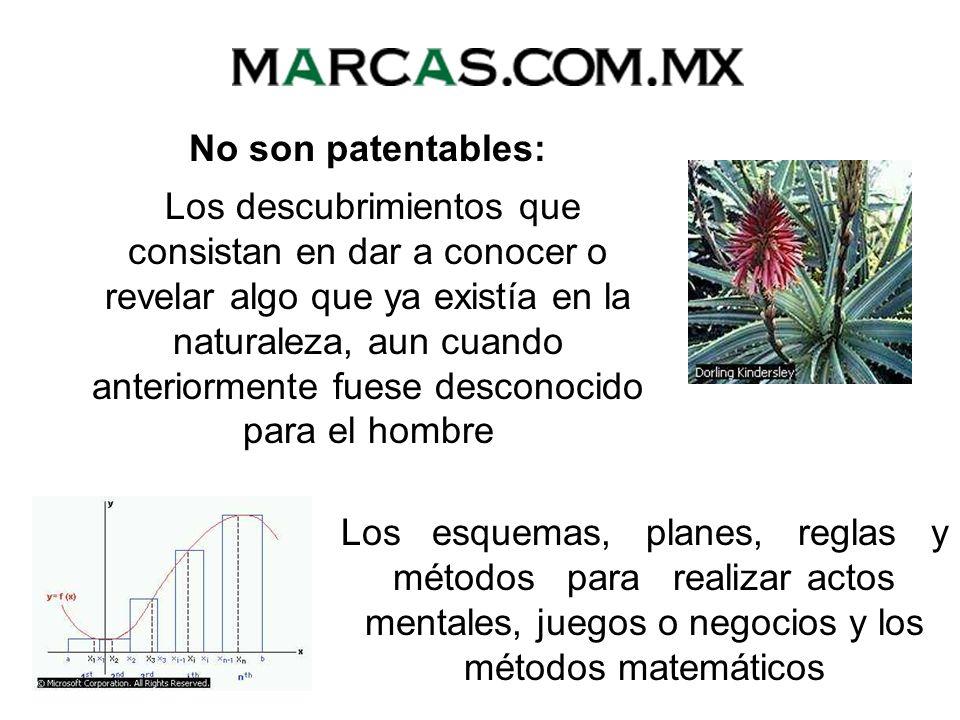 No son patentables: El cuerpo humano y las partes vivas que lo componen Las variedades vegetales Los principios teóricos o científicos