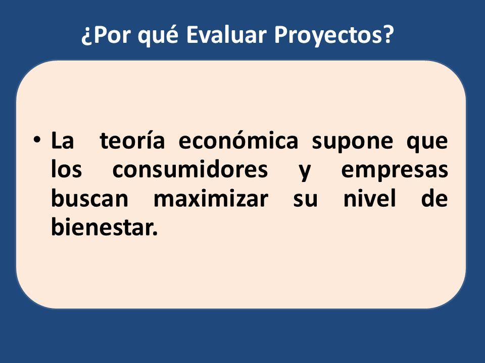 La teoría económica supone que los consumidores y empresas buscan maximizar su nivel de bienestar. ¿Por qué Evaluar Proyectos?