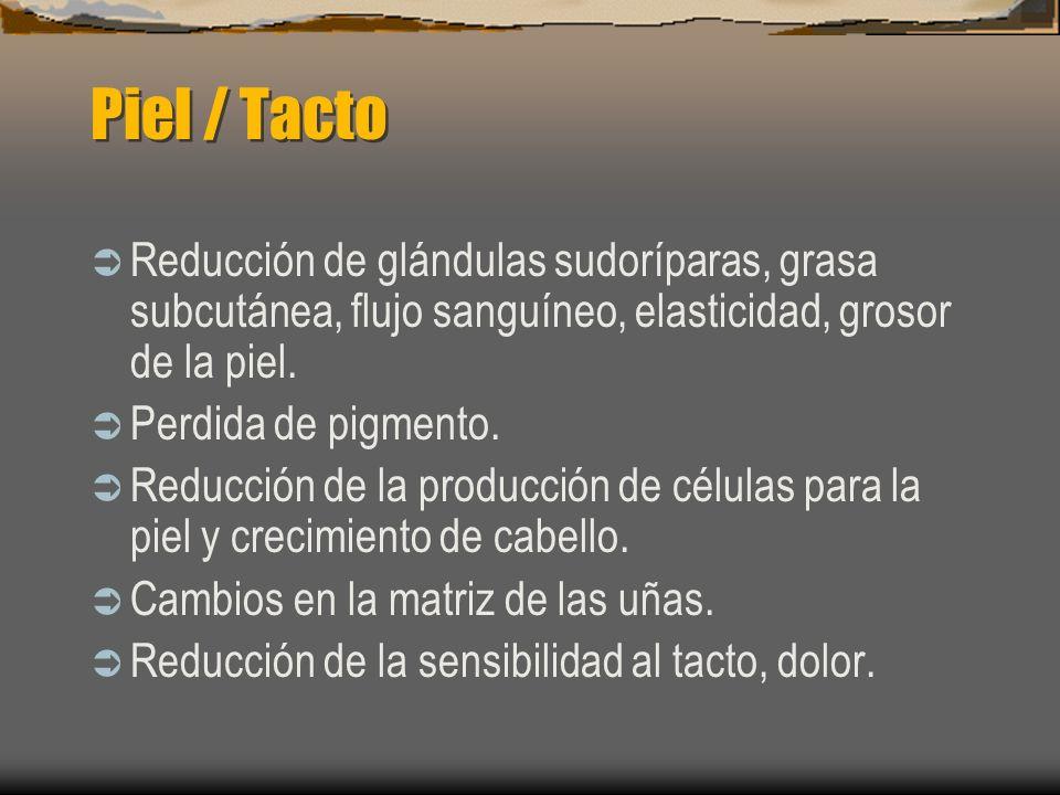 Piel / Tacto Reducción de glándulas sudoríparas, grasa subcutánea, flujo sanguíneo, elasticidad, grosor de la piel. Perdida de pigmento. Reducción de