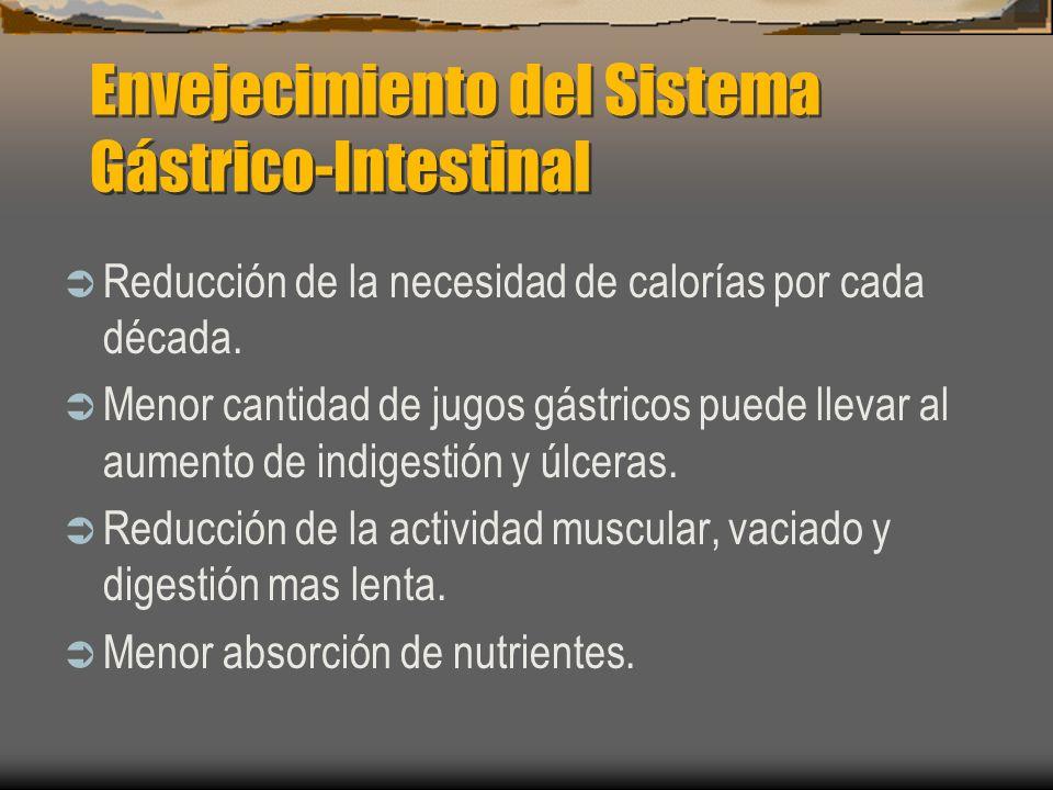 Envejecimiento del Sistema Gástrico-Intestinal Reducción de la necesidad de calorías por cada década. Menor cantidad de jugos gástricos puede llevar a