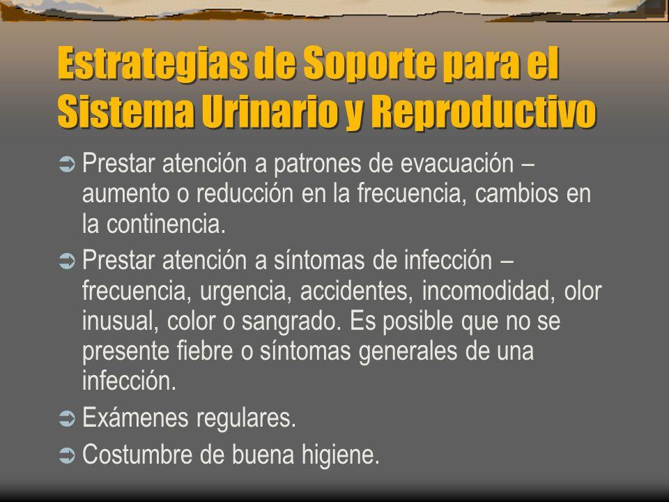 Estrategias de Soporte para el Sistema Urinario y Reproductivo Prestar atención a patrones de evacuación – aumento o reducción en la frecuencia, cambi