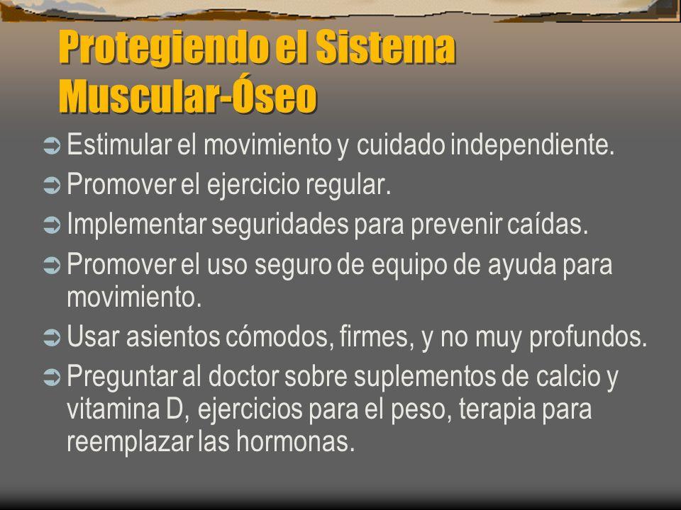 Protegiendo el Sistema Muscular-Óseo Estimular el movimiento y cuidado independiente. Promover el ejercicio regular. Implementar seguridades para prev