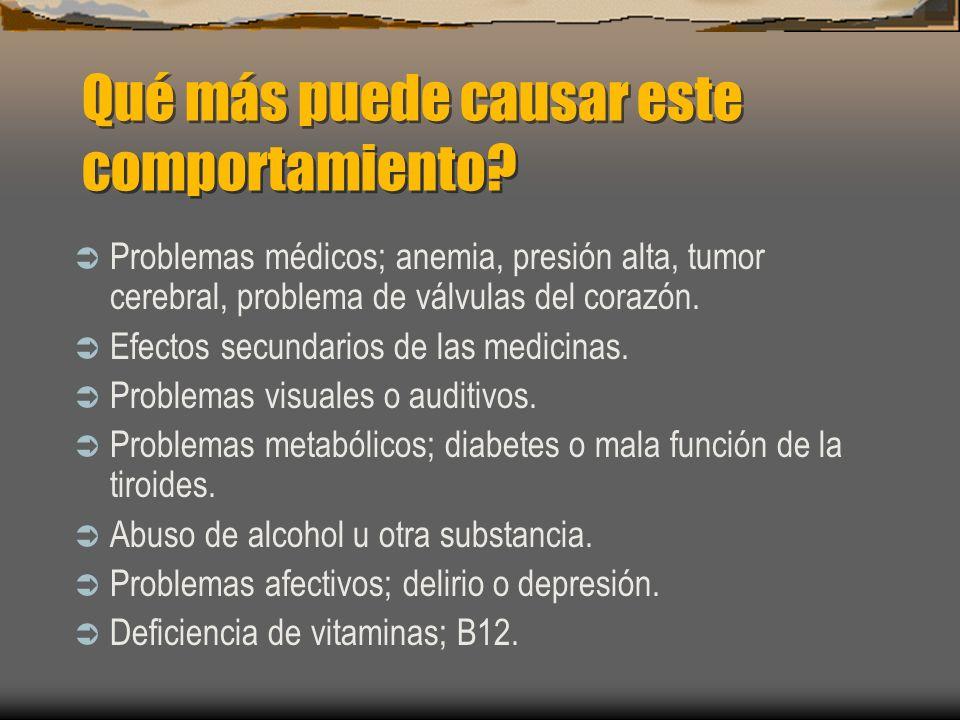 Qué más puede causar este comportamiento? Problemas médicos; anemia, presión alta, tumor cerebral, problema de válvulas del corazón. Efectos secundari