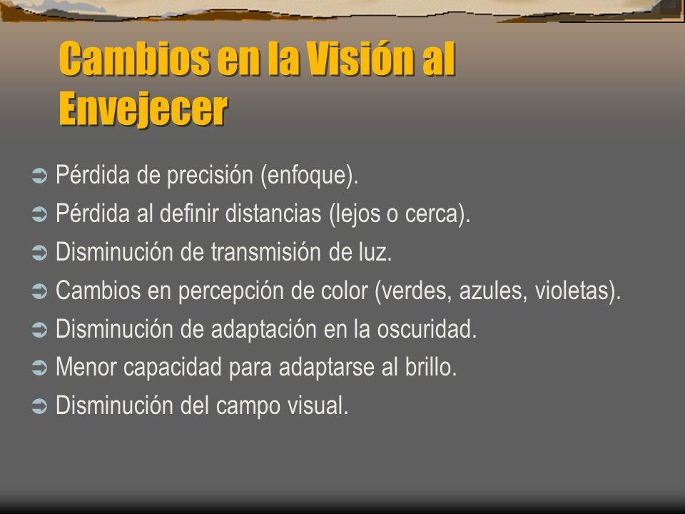 Cambios en la Visión al Envejecer Pérdida de precisión (enfoque). Pérdida al definir distancias (lejos o cerca). Disminución de transmisión de luz. Ca
