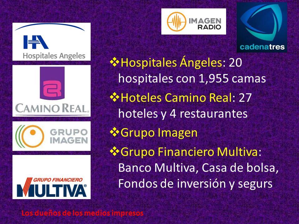 Hospitales Ángeles: 20 hospitales con 1,955 camas Hoteles Camino Real: 27 hoteles y 4 restaurantes Grupo Imagen Grupo Financiero Multiva: Banco Multiva, Casa de bolsa, Fondos de inversión y segurs Los dueños de los medios impresos