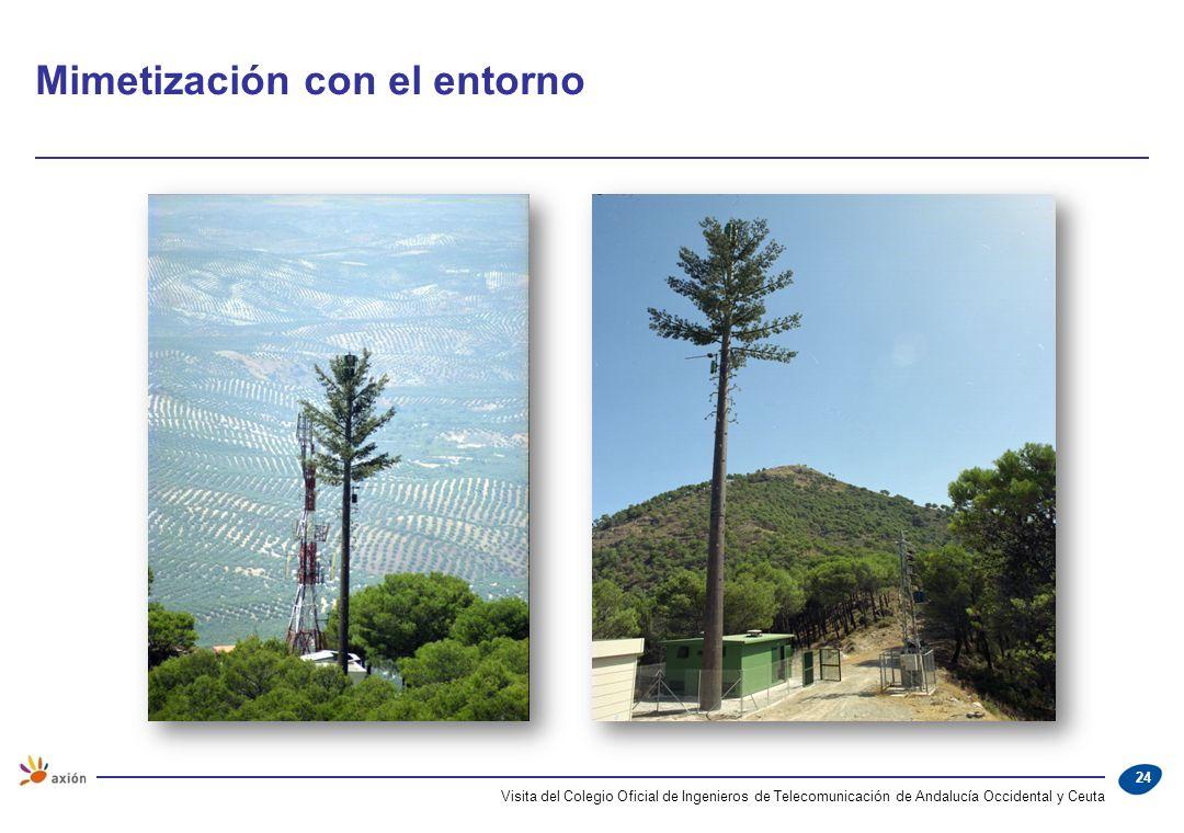 Mimetización con el entorno Visita del Colegio Oficial de Ingenieros de Telecomunicación de Andalucía Occidental y Ceuta 24