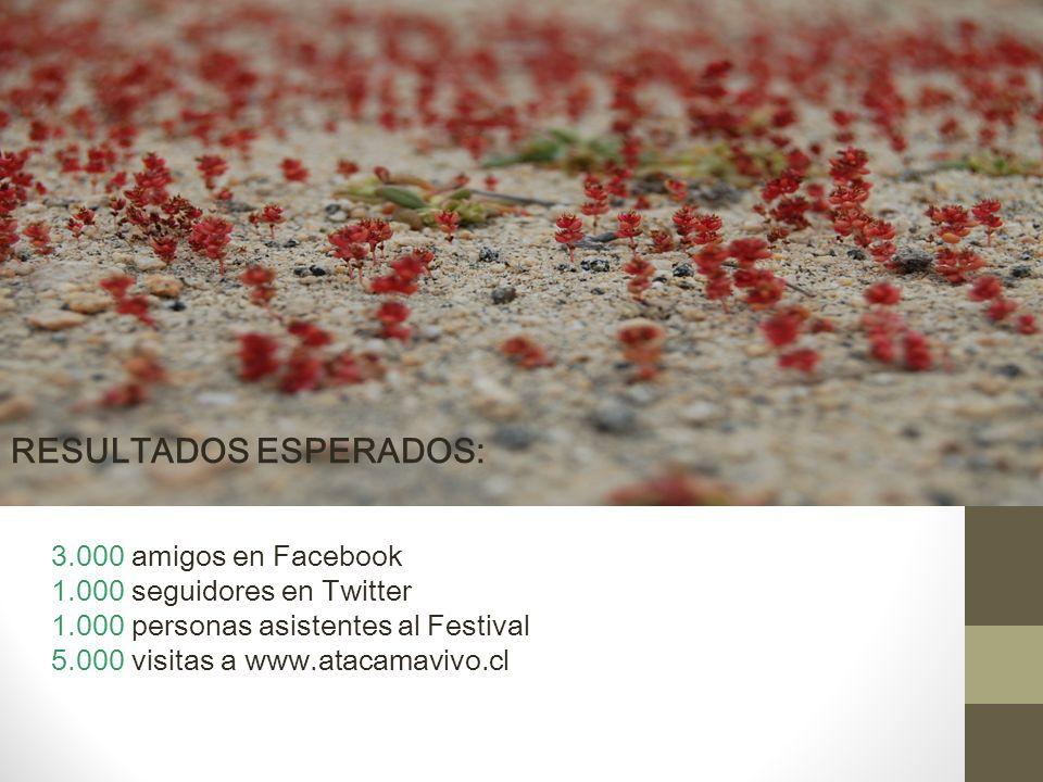 RESULTADOS ESPERADOS: 3.000 amigos en Facebook 1.000 seguidores en Twitter 1.000 personas asistentes al Festival 5.000 visitas a www.atacamavivo.cl
