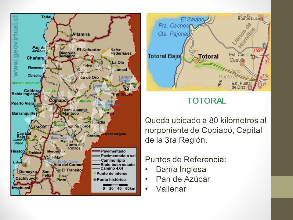TOTORAL Queda ubicado a 80 kilómetros al norponiente de Copiapó, Capital de la 3ra Región.