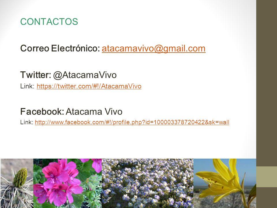 CONTACTOS Correo Electrónico: atacamavivo@gmail.comatacamavivo@gmail.com Twitter: @AtacamaVivo Link: https://twitter.com/#!/AtacamaVivohttps://twitter.com/#!/AtacamaVivo Facebook: Atacama Vivo Link: http://www.facebook.com/#!/profile.php id=100003378720422&sk=wallhttp://www.facebook.com/#!/profile.php id=100003378720422&sk=wall