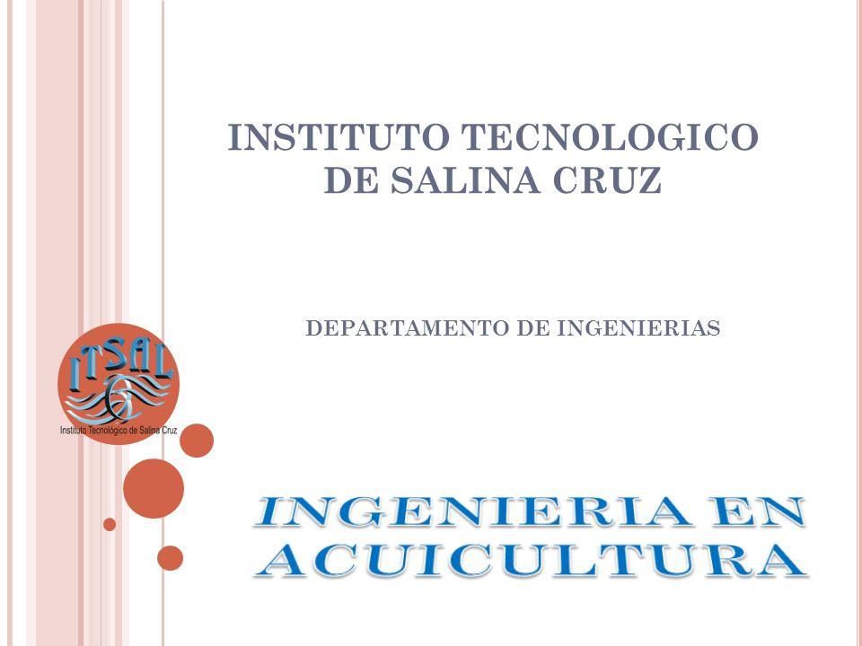 INSTITUTO TECNOLOGICO DE SALINA CRUZ DEPARTAMENTO DE INGENIERIAS