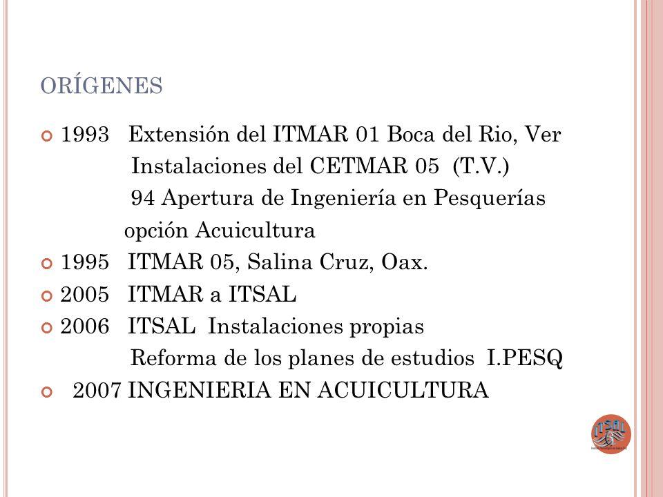 ORÍGENES 1993 Extensión del ITMAR 01 Boca del Rio, Ver Instalaciones del CETMAR 05 (T.V.) 94 Apertura de Ingeniería en Pesquerías opción Acuicultura 1