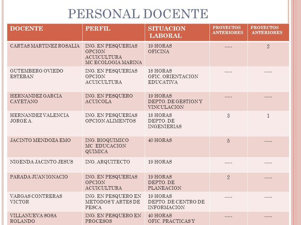 PERSONAL DOCENTE DOCENTEPERFILSITUACION LABORAL PROYECTOS ANTERIORES PROYECTOS ANTERIORES CARTAS MARTINEZ ROSALIAING.