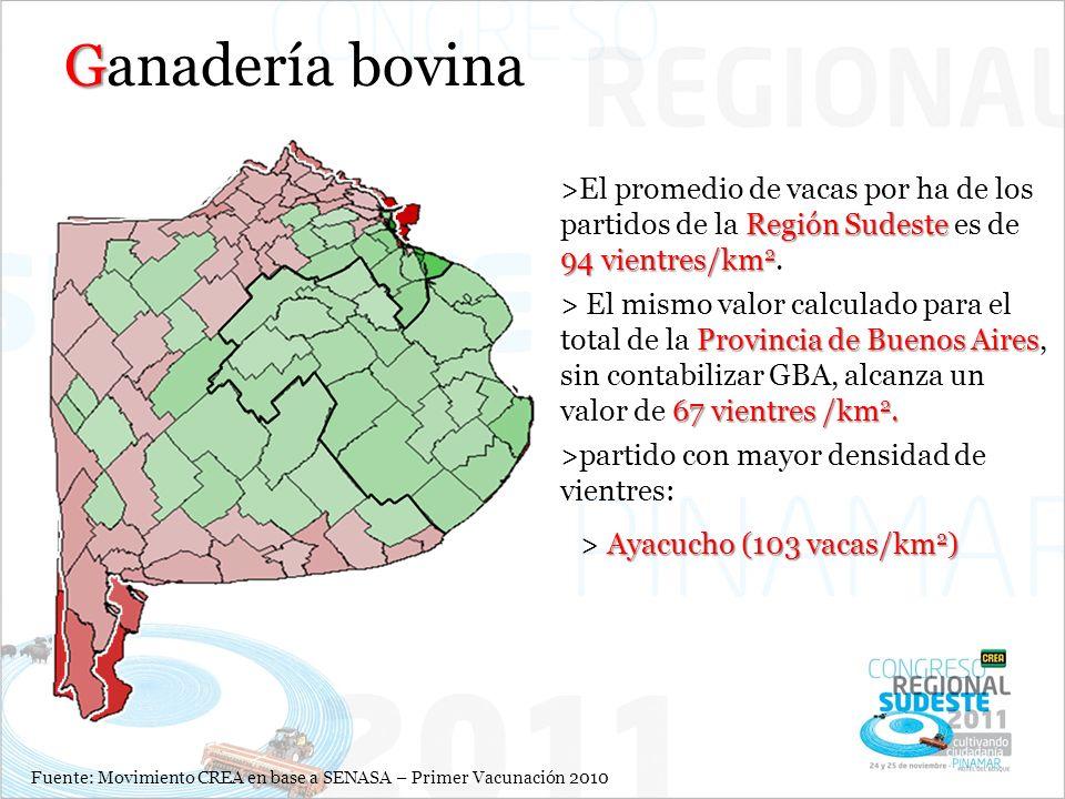 G Ganadería bovina Fuente: Movimiento CREA en base a SENASA – Primer Vacunación 2010 Región Sudeste 94 vientres/km 2 >El promedio de vacas por ha de los partidos de la Región Sudeste es de 94 vientres/km 2.