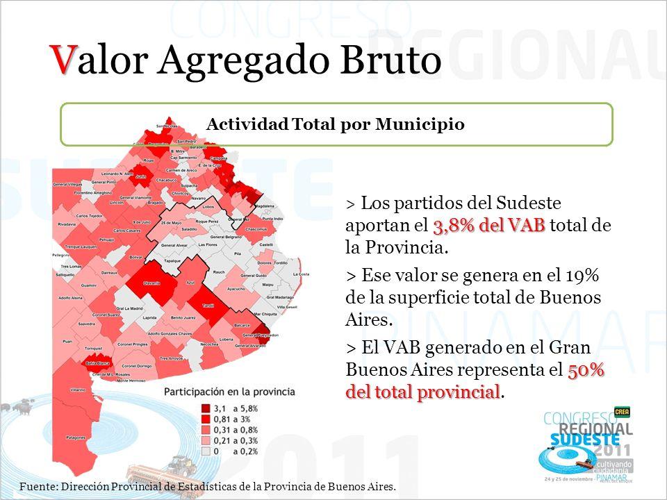 V Valor Agregado Bruto 3,8%del VAB > Los partidos del Sudeste aportan el 3,8% del VAB total de la Provincia. > Ese valor se genera en el 19% de la sup