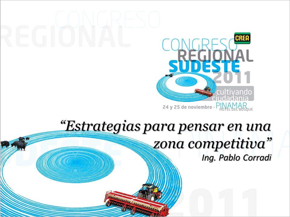 Estrategias para pensar en una zona competitiva Ing. Pablo Corradi