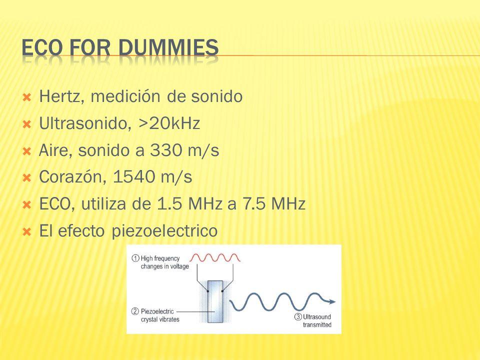 Hertz, medición de sonido Ultrasonido, >20kHz Aire, sonido a 330 m/s Corazón, 1540 m/s ECO, utiliza de 1.5 MHz a 7.5 MHz El efecto piezoelectrico