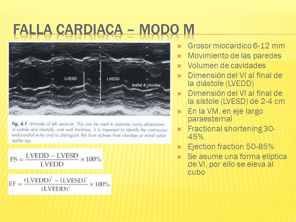 Grosor miocardico 6-12 mm Movimiento de las paredes Volumen de cavidades Dimensión del VI al final de la diástole (LVEDD) Dimensión del VI al final de