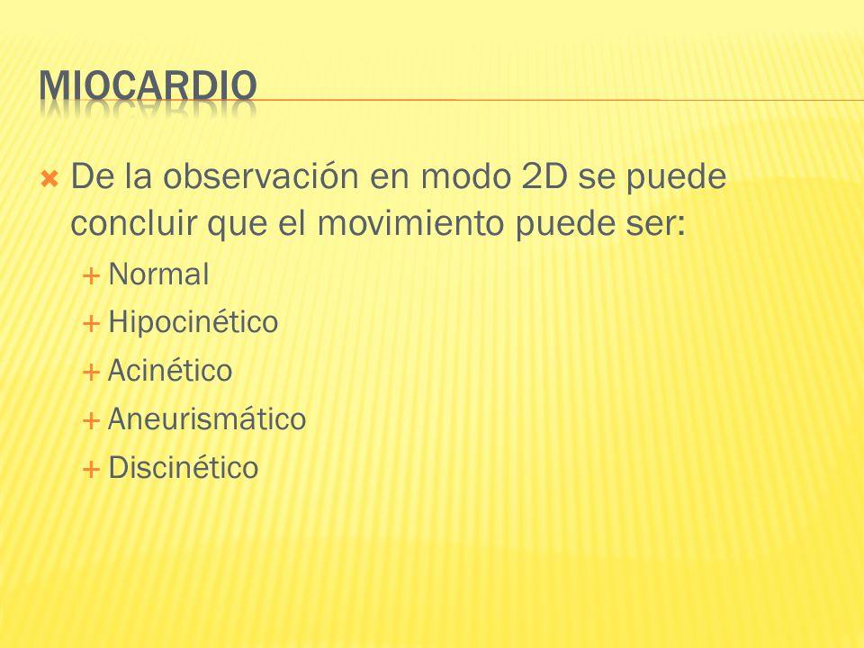 De la observación en modo 2D se puede concluir que el movimiento puede ser: Normal Hipocinético Acinético Aneurismático Discinético