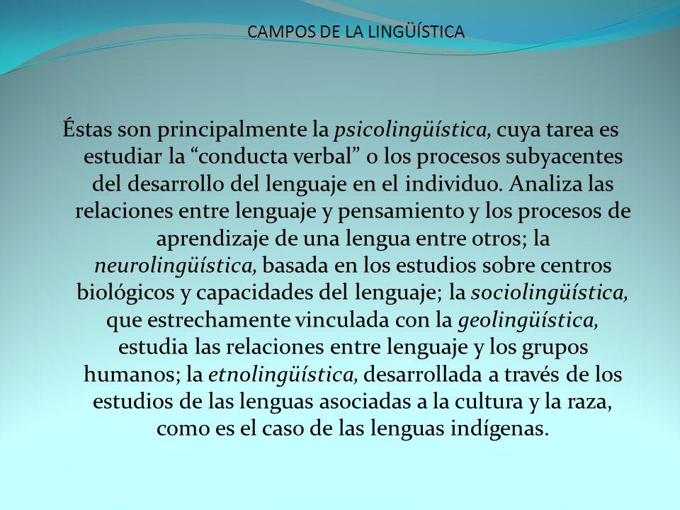 CAMPOS DE LA LINGÜÍSTICA Éstas son principalmente la psicolingüística, cuya tarea es estudiar la conducta verbal o los procesos subyacentes del desarr